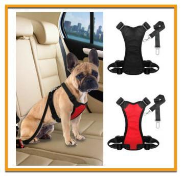 French Bulldog safety in a car
