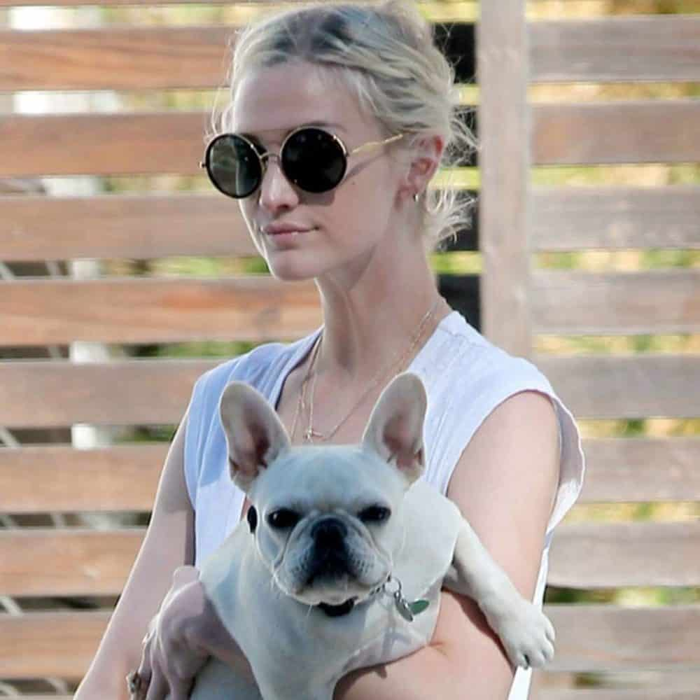Ashlee Simpson with French Bulldog