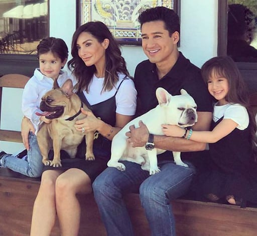 Mario Lopez French Bulldog