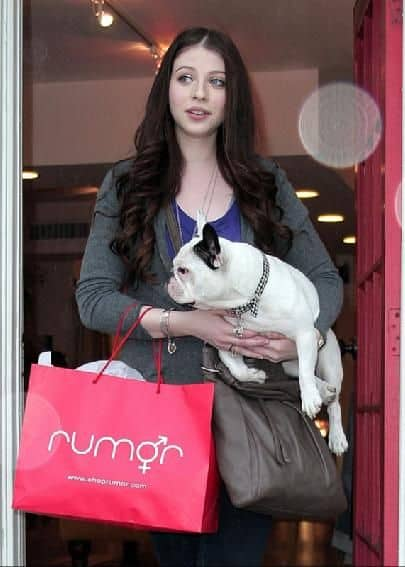 Michelle Trachtenberg French Bulldog