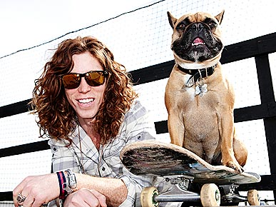 Shaun White French Bulldog