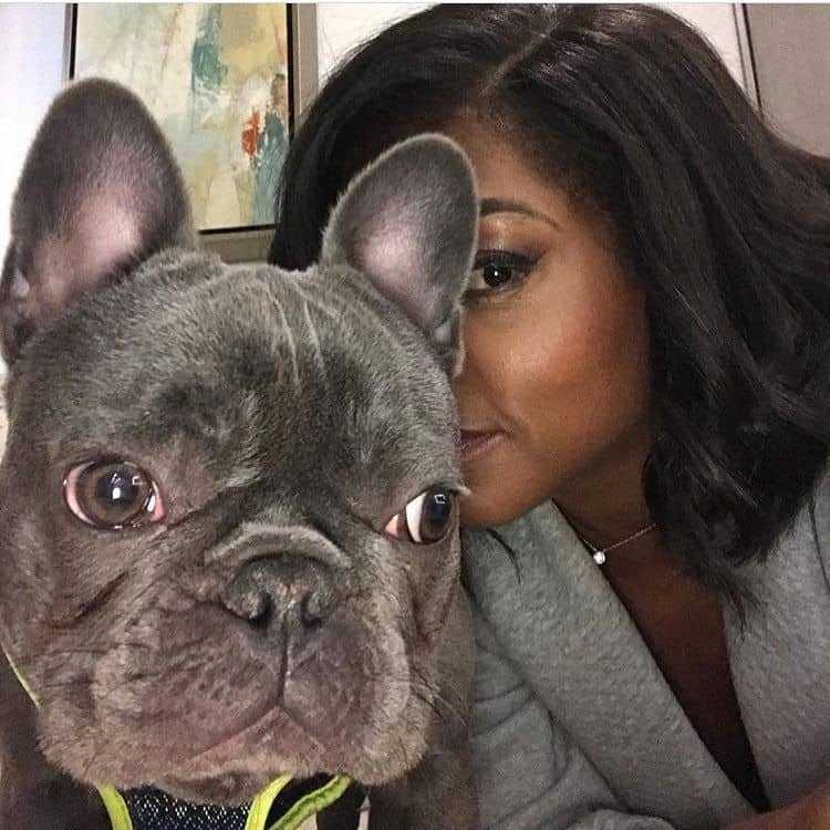 Taraji P. Henson French Bulldog