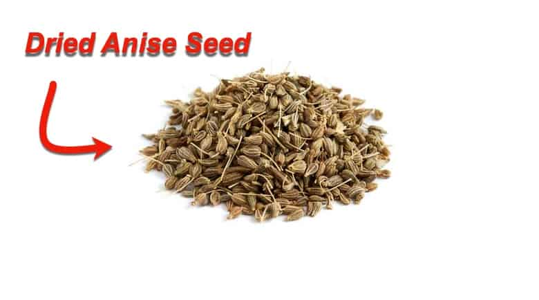 anise seed for dogs
