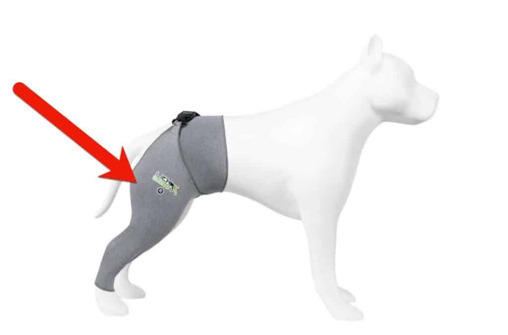 lick sleeve for injured dog leg